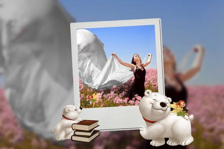 Polar bear photo frame