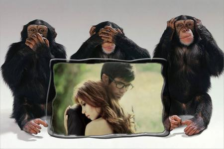 Photo Frame 3 monkeys