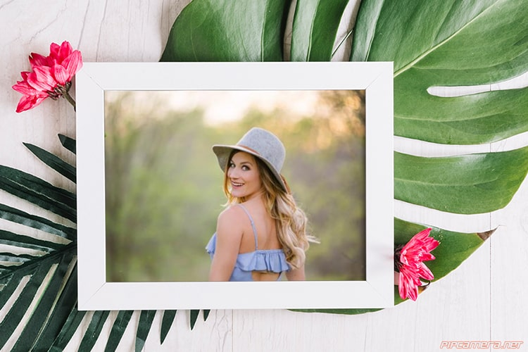Tropical Leaves  With Photo Frame