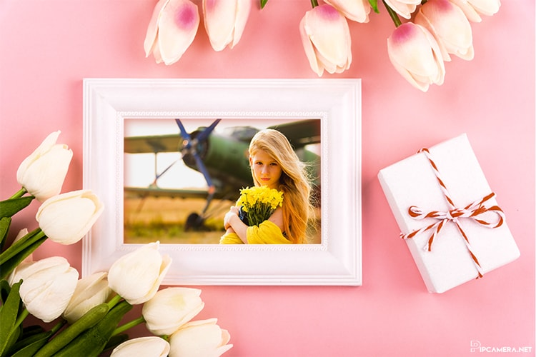 Photo frames with flower and gift box for March 8